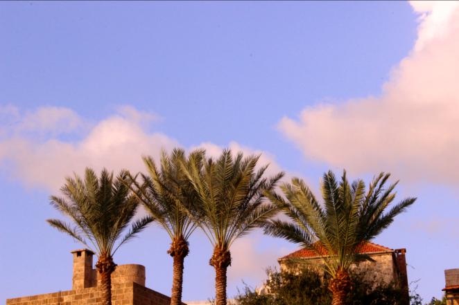 byblos-lebanon-landscape